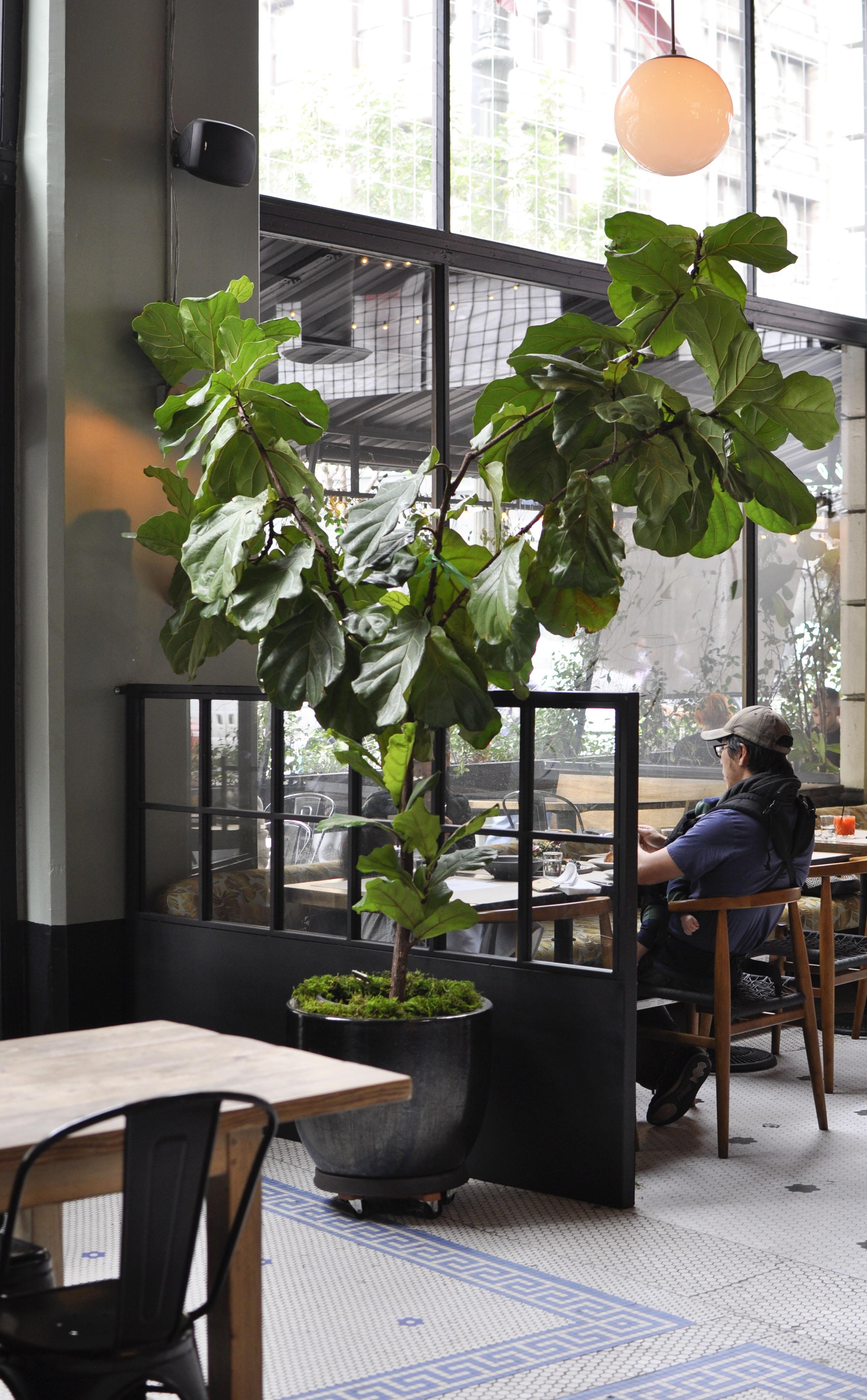 PYT Restaurant